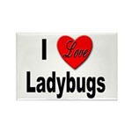 I Love Ladybugs Rectangle Magnet (10 pack)