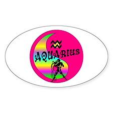 Aquarius Yin Yang /pink Oval Decal
