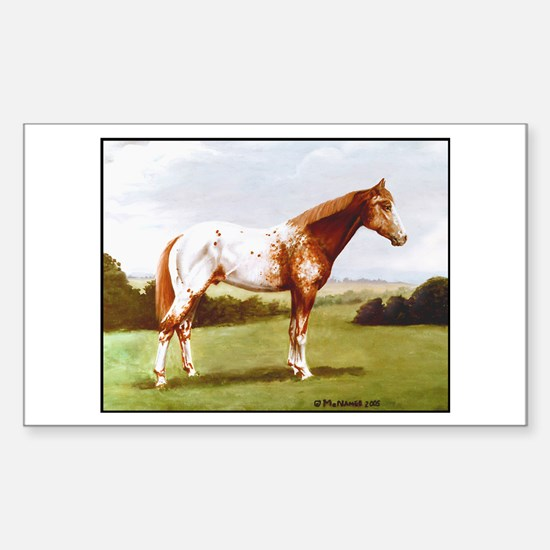 Appaloosa Sticker (Rectangle)