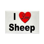 I Love Sheep Rectangle Magnet (10 pack)