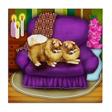 POMERANIAN DOGS Tile Coaster