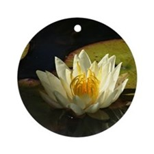 white lotus water lily peace Ornaments