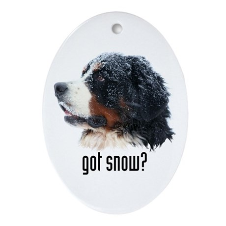 got snow? Oval Ornament