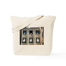 Venice Windows Tote Bag