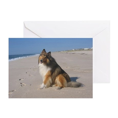 Collie at the Beach Greeting Cards (Pk of 20)