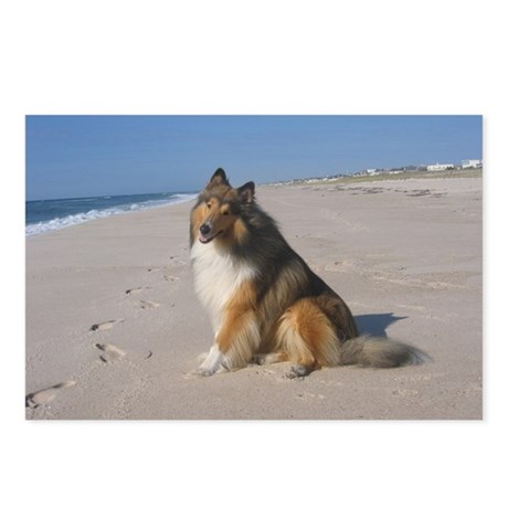 Collie at the Beach Postcards (Package of 8)