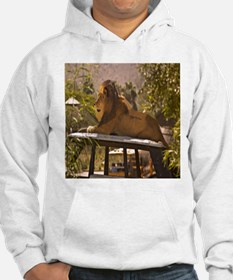 Lion on a Car Hoodie