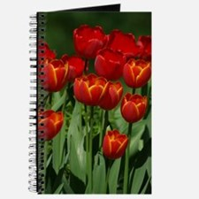 Spring Tulips Journal