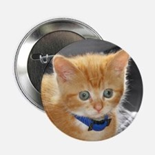 Ginger Kitten Button