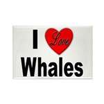 I Love Whales Rectangle Magnet (10 pack)
