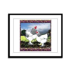 Framed Brahma Chickens Framed Panel Print