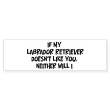 Labrador Retriever like you Bumper Bumper Sticker