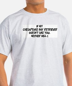 Chesapeake Bay Retriever like T-Shirt