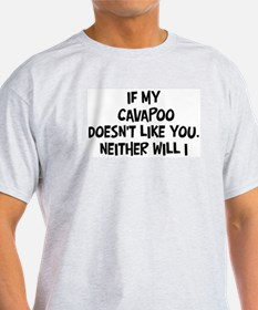 Cavapoo like you T-Shirt