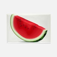 Watermelon Rectangle Magnet