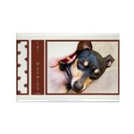 Chi-Weenies.com Rectangle Magnet (10 pack)