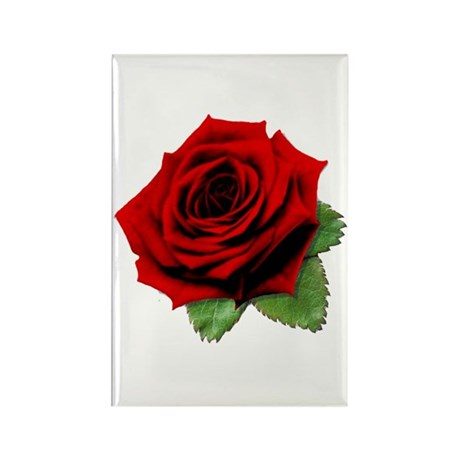 A Rose is a Rose Rectangle Magnet