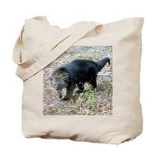 Bearcat Tote Bag