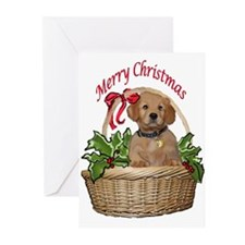 puppy in holly basket Greeting Cards (Pk of 10)