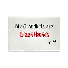 Ibizan Grandkids Rectangle Magnet