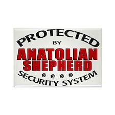 Anatolian Shepherd Security Rectangle Magnet