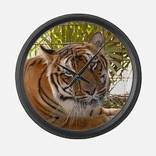 Tiger Bengali Large Wall Clock