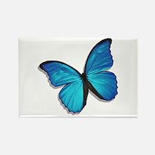 Blue Morpho Butterfly Rectangle Magnet