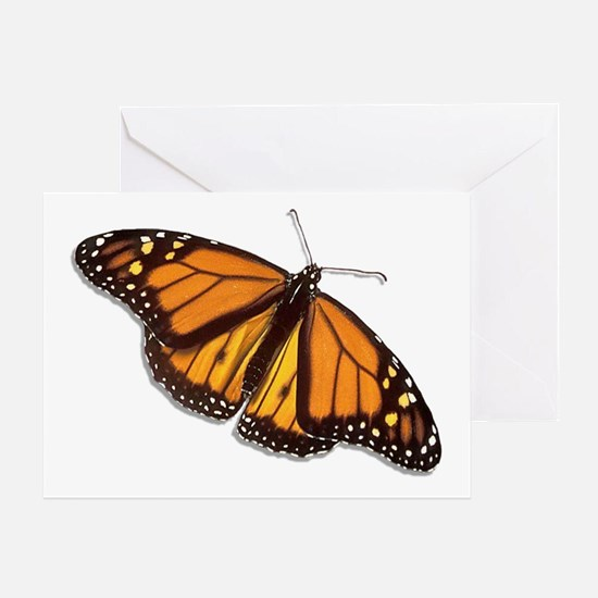The Monarch Butterfly Greeting Card