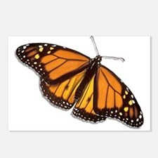 The Monarch Butterfly Postcards (Package of 8)