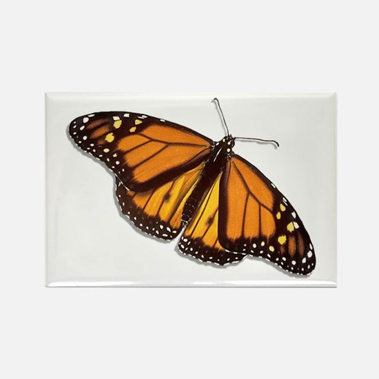 The Monarch Butterfly Rectangle Magnet