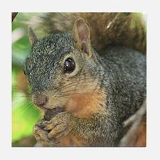 Munching Squirrel Tile Coaster