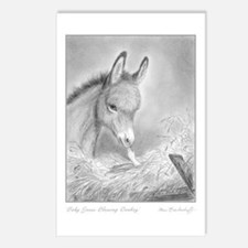 Baby Jesus Blessing Donkey ~ Postcards (8 pack)