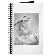 Baby Jesus Blessing Donkey ~ Journal
