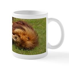 African Lion Playing Mug