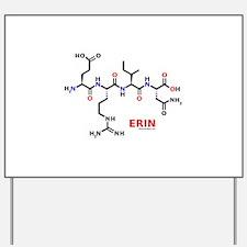 Erin name molecule Yard Sign