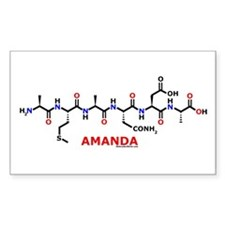 Amanda name molecule Rectangle Decal