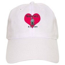 Turtleboy Worcester is for Lovers Baseball Cap