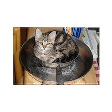 Kitten in a frying pan Rectangle Magnet