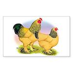 Buff Brahmas2 Rectangle Sticker