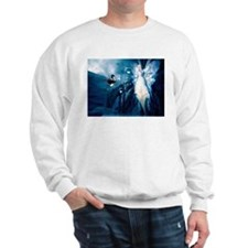 Funny Ninjas Sweatshirt