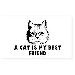 A cat is my best friend Rectangle Sticker 10 pk)
