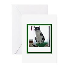 Tuxedo Cat Greeting Cards (Pk of 20)