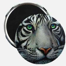 """White Tiger 2.25"""" Magnet (100 pack)"""