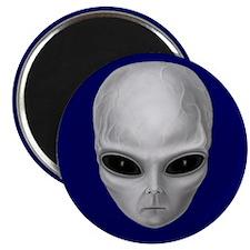 Alien Stare Magnet