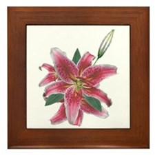 Stargazer! Framed Tile