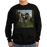 Painted Horse and Foal Sweatshirt (dark)