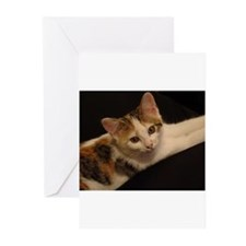 Funny Humane society Greeting Cards (Pk of 10)
