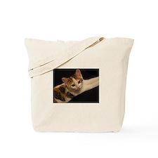 Funny Cat human Tote Bag