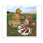Two Trumpeter Pigeons Small Poster
