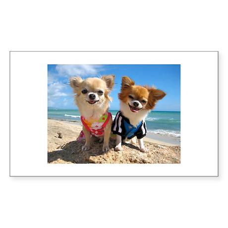 Chihuahua Rectangle Sticker 10 pk)